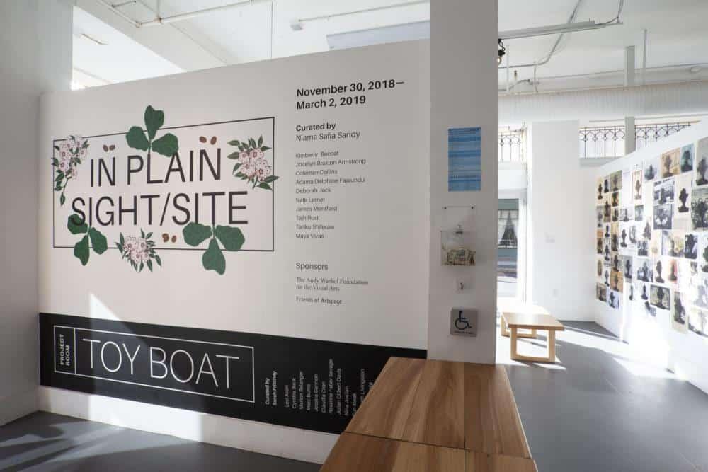 "installation view ""In Plain Sight/Site"", 2018. Photo credit Jessica Smolinski."
